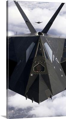 The F117A Nighthawk