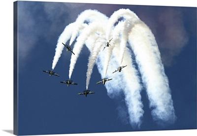 The United Arab Emirates Al Fursan aerobatic team