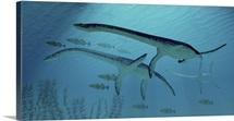 Three Plesiosaurus dinosaurs migrate with a school of fish