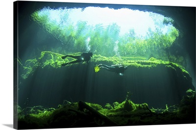Two scuba divers in the cenote system on the Yucatan Peninsula of Mexico