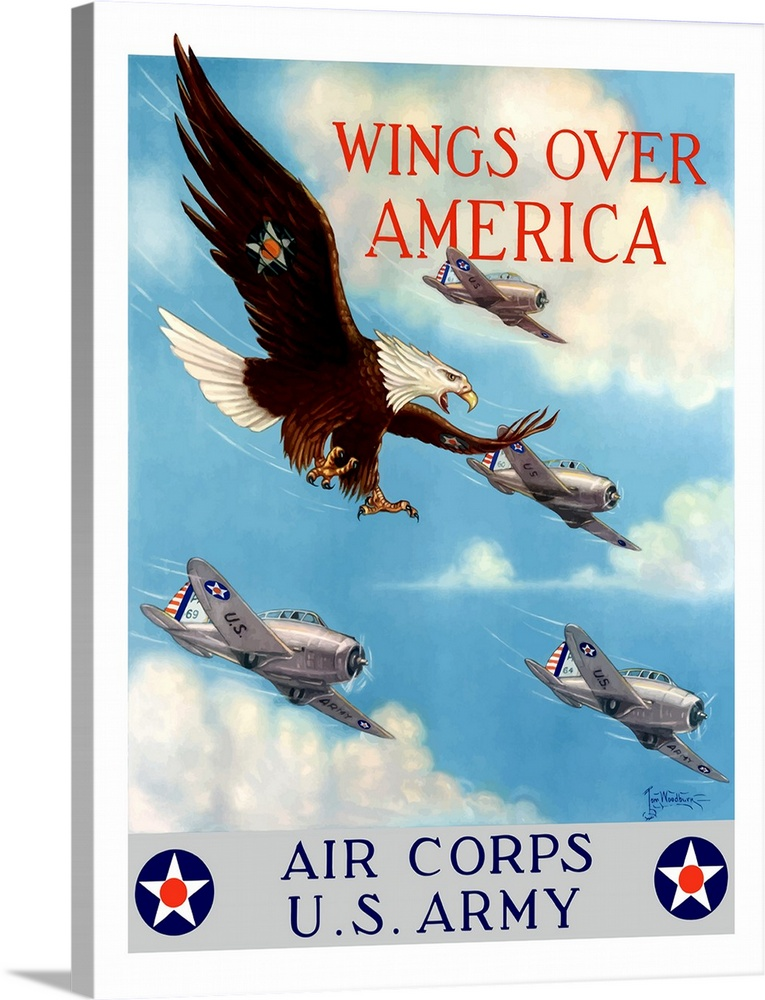 The American Bald Eagle Great Flying POSTER