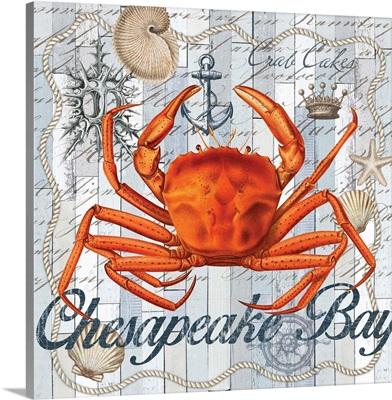 Chesapeake Bay II