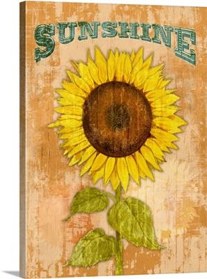 Country Sunflowers II