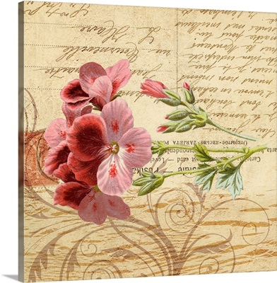 French Country Botanicals II