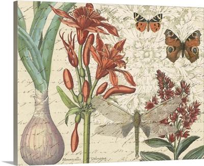 Garden Concerto Botanical II