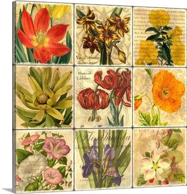 Garden Patchwork I