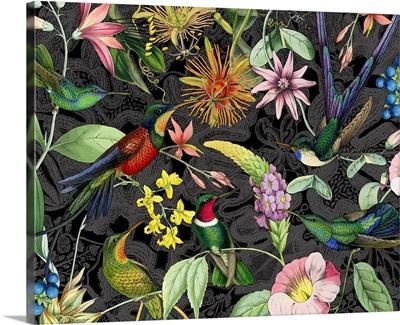 Hummingbird Jungle I