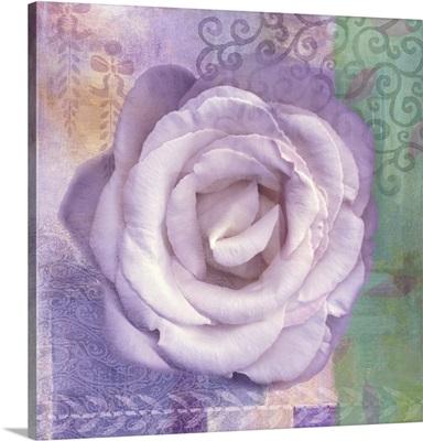 Lavender Rose I