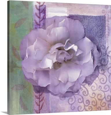 Lavender Rose II