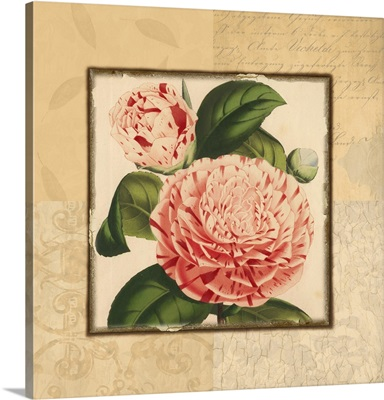 Red and White Floral Quad I