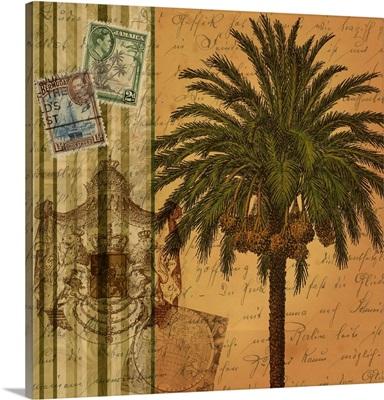 Safari Palm III