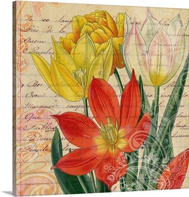 Tulip Lesson II