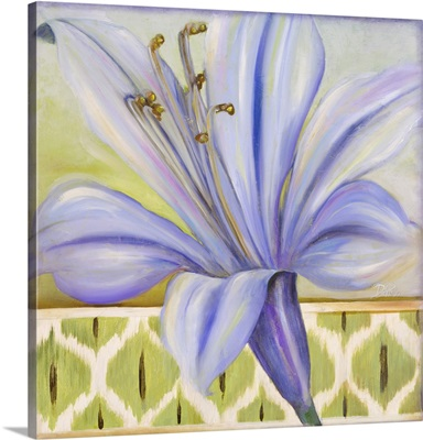 African Lily I