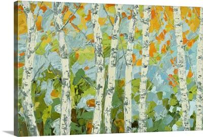 Autumn Dancing Birch Tree