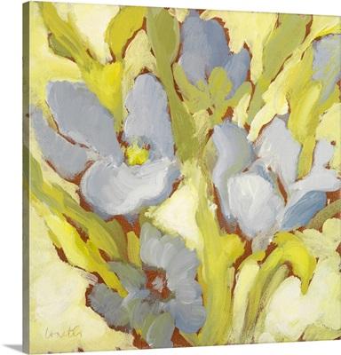 Begonia Bleu II