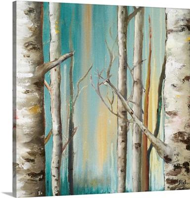 Birch Forest II