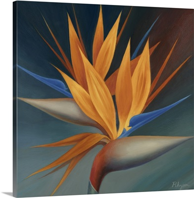 Bird of Paradise II