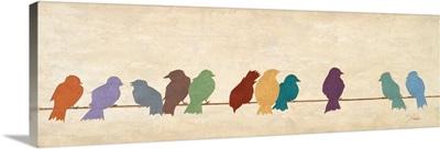 Birds Meeting
