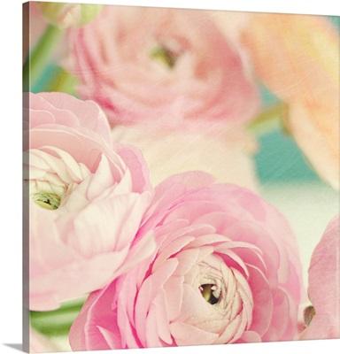 Blushing Blossoms Square I