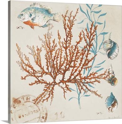 Coral Medley I