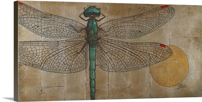 Dragonfly on Silver