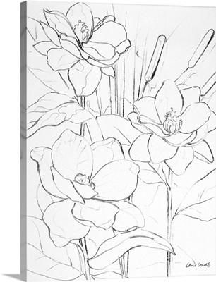 Floral Sketch II