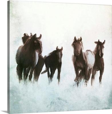 Horses Running Through The Surf