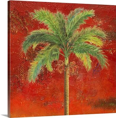 La Palma on Red II