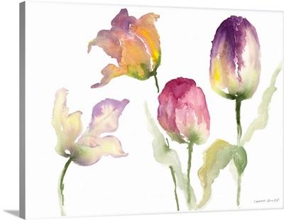 Lavender Hues Tulips I