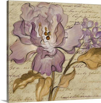 Lilac Dream II