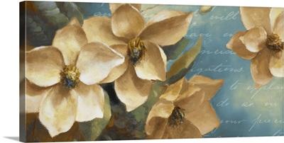 Magnolia Aglow II