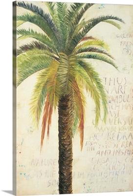 Palms And Scrolls II