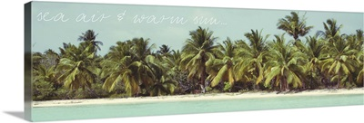 Palms Galore I