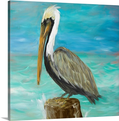 Pelicans on Post I