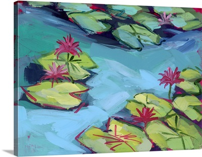 Pink Lily Pad Pond