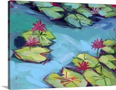 Pink Lily Pad Pond