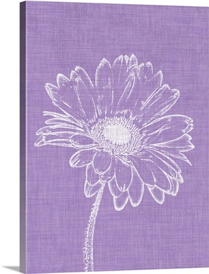 Purple Daisies I