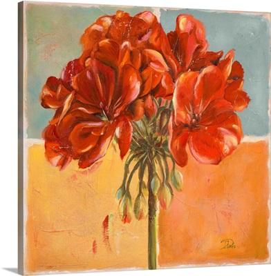 Red Geraniums I