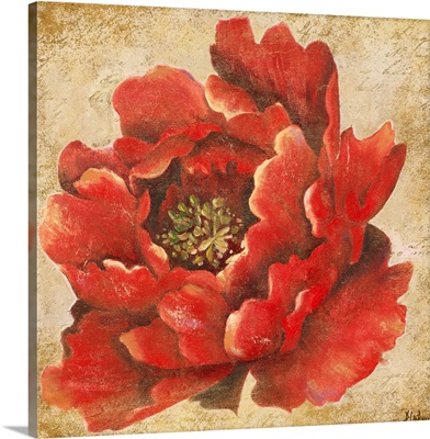 Red Peony on Gold