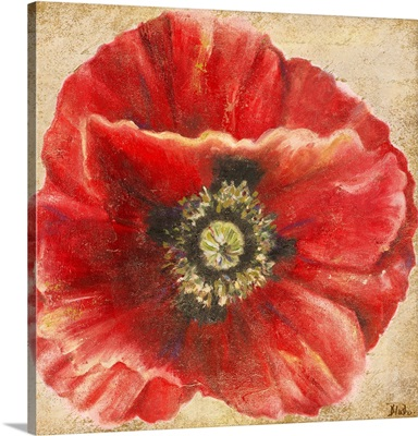Red Poppy on Gold (without stem)