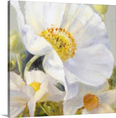 Sunbeam Flowers I