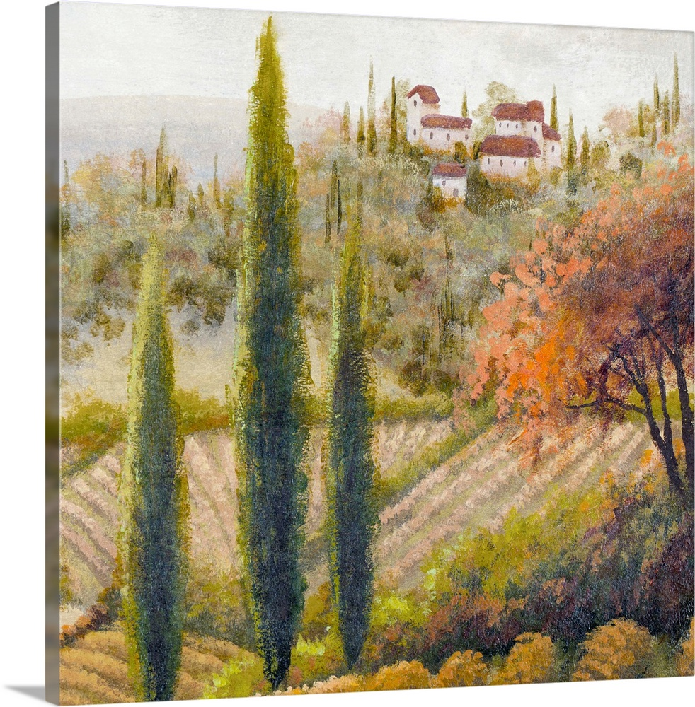Tuscany Vineyard Ii Wall Art Canvas Prints Framed Prints Wall Peels Great Big Canvas