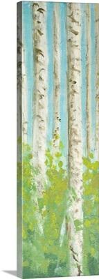 Vibrant Birchwood I