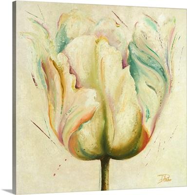 White Double Tulips I