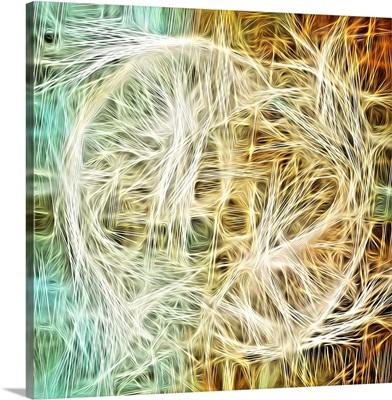Eternally Intertwined