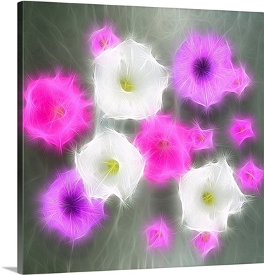 Floral Aura Essence
