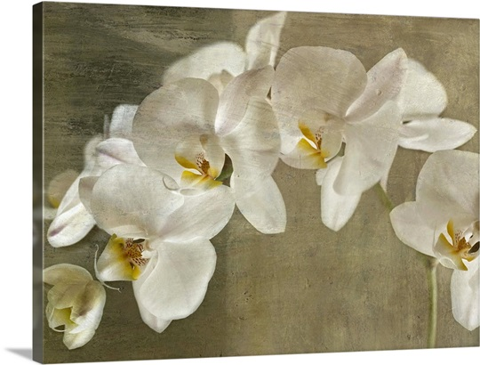 Brand new Painted Orchid Wall Art, Canvas Prints, Framed Prints, Wall Peels  KQ68