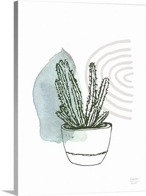 Prickly Succulent