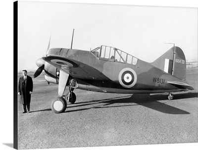 British Fighter Plane, 1941, of the British Royal Air Force: The Brewster F2A Buffalo