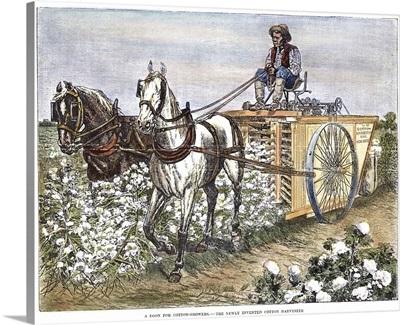 Cotton Harvester, 1886